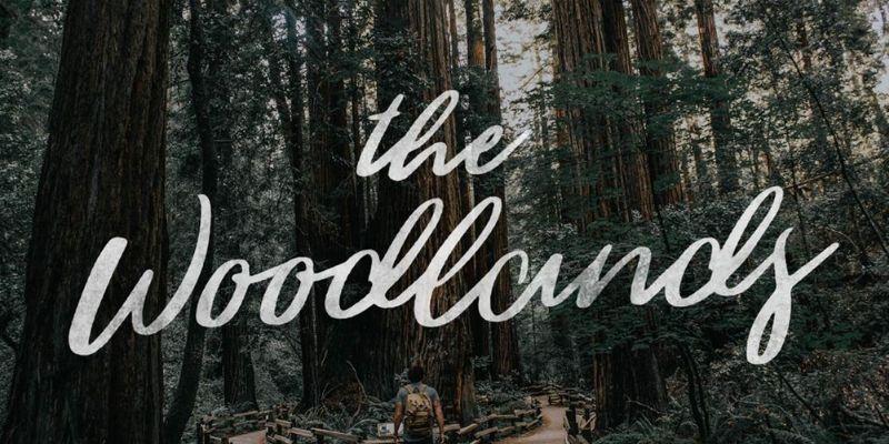 Best Cursive Fonts - The WoodLands Font